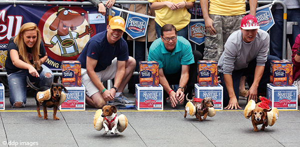 Zinzinnati-Oktoberfest: Running of the Wieners